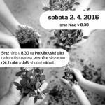 sazeni_stromu_2016